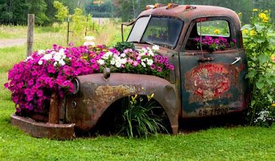 Carro com flores no jardim - reciclagem