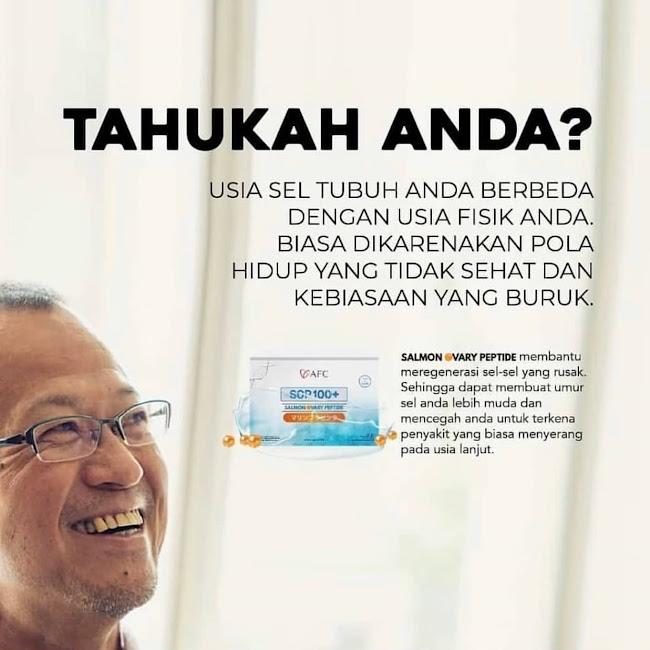 Agen Jual: SOP Subarashi AFC Japan, SOP 100 Vs Utsukushii, di Palembang