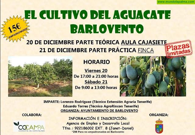 Curso El Cultivo del Aguacate en Barlovento