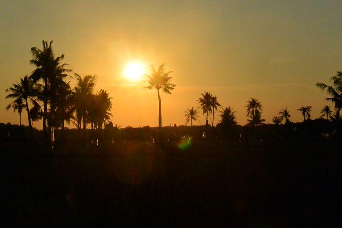 Sunset di sudut sawah Karimunjawa