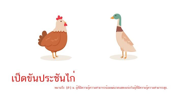 เป็ดขันประชันไก่ หมายถึงอะไร ?