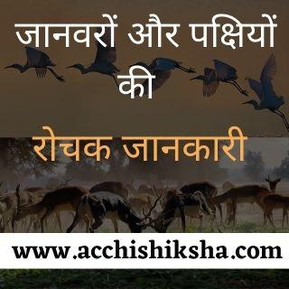 जानवरों और पक्षियों से जुड़े रोचक तथ्य - Amazing Facts about Animals and Birds in Hindi