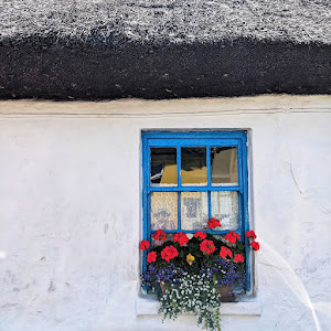 Window with red flowers on a thatched cottage in Ardmore Ireland