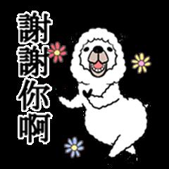 Smiling Alpaca 3