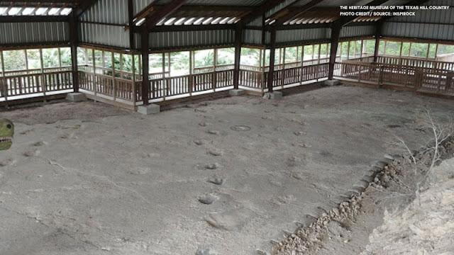 pavilion covering dinosaur tracks
