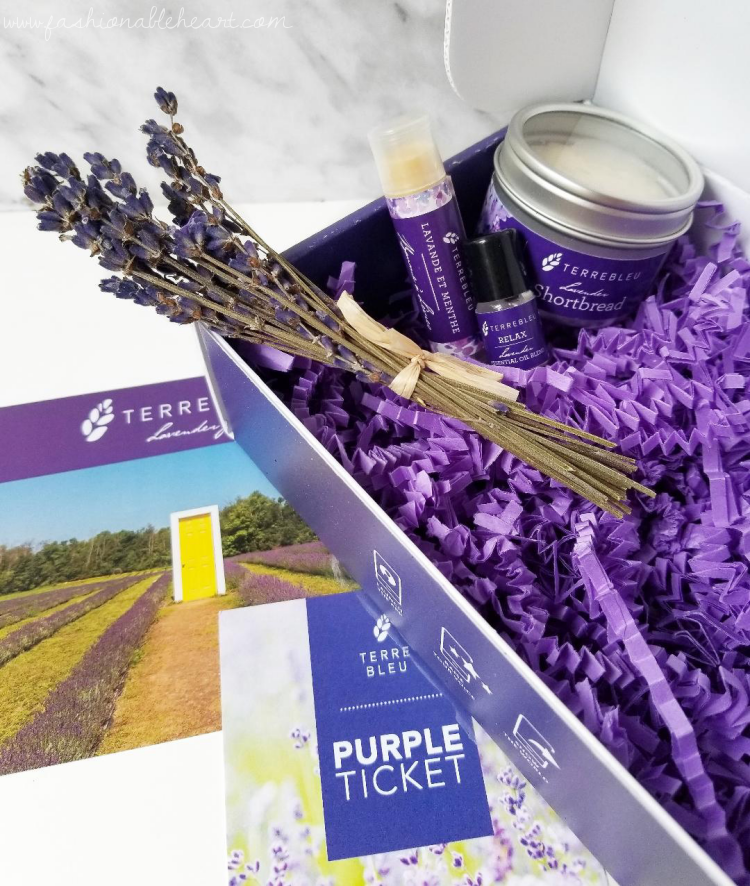 bblogger, bbloggers, bbloggerca, canadian beauty blogger, milton ontario, terre bleu, lavender, farm, shortbread, cookies, lip balm, mint, roll on, lavender oil, dried bouquet, lavender bouquet, essential oil, jojoba seed oil, rollerball, lavender mint, review, benefits of lavender oil