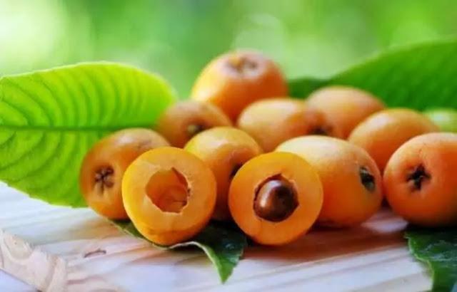 Loquat - Fruit rich in benefits