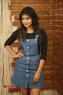 Actress Hebah Patel Stills at Nanna Nenu Naa Boyfriends Movie Interview  0017.JPG