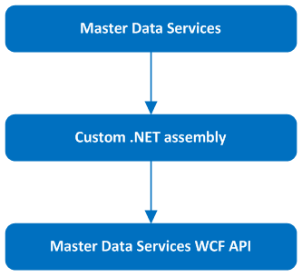 Master Data Services – Working with attributes using WCF API