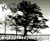 http://jahreszeitenbriefe.blogspot.de/search/label/Mein%20Freund%20der%20Baum