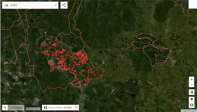 Brasil perde 24 árvores por segundo em 2020 enquanto alertas de desmatamento explodem