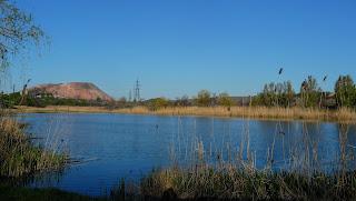 Ставок на річці Сінній в балці Сінній