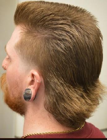 gaya rambut mullet