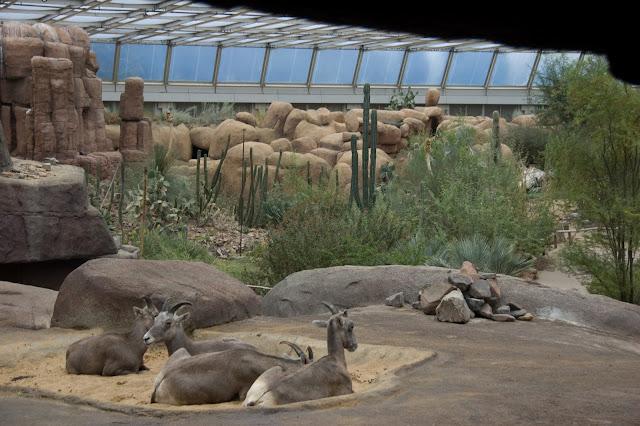 حديقة حيوان برغرز