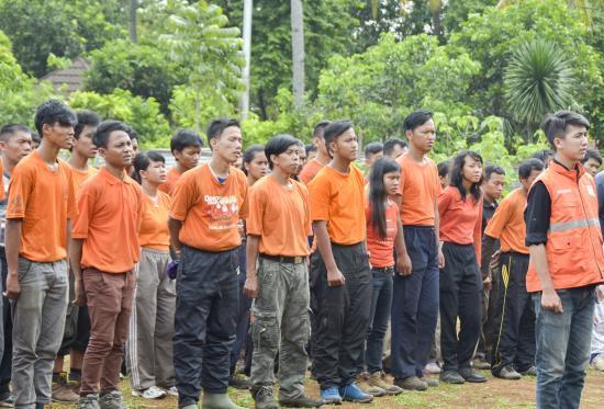 Image Result For Cerita Dongeng Nabi Sulaiman