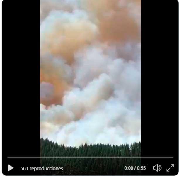 Vídeo incendio forestal Artenara, cumbre Gran Canaria