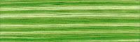 мулине Cosmo Seasons 8021, карта цветов мулине Cosmo