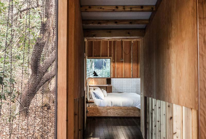 Forest House by Envelope A + D