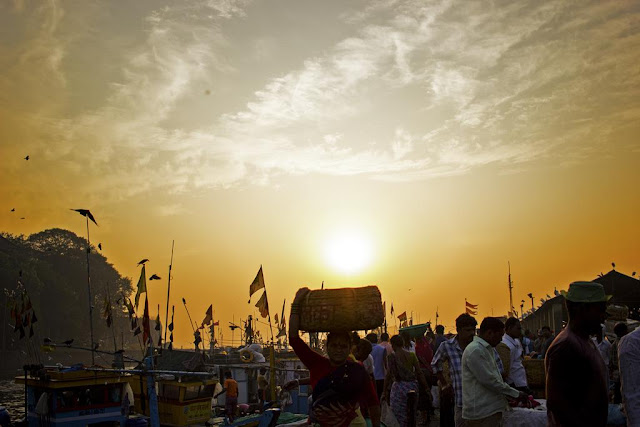 golden hour, sunrise, sassoon docks, fisherfolk, boats, flags, fish market, birds, mumbai, india