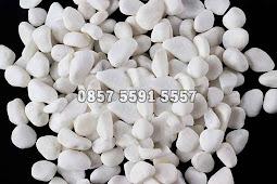 Jual Batu Koral Kecil Putih
