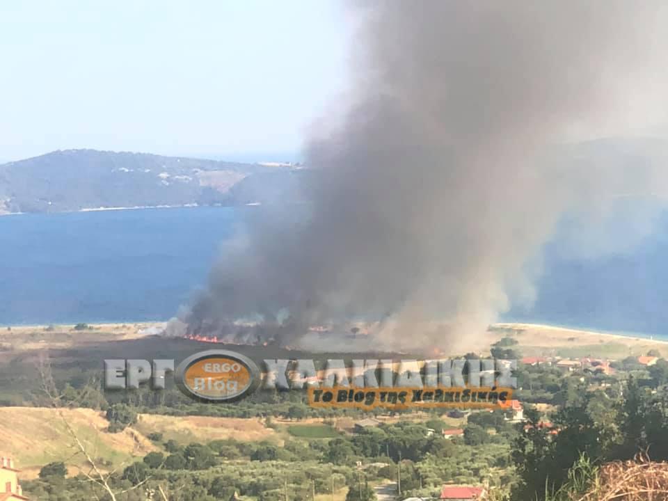 Υπό πλήρη έλεγχο η φωτιά στην περιοχή Ξηροποτάμι της Ιερισσού.