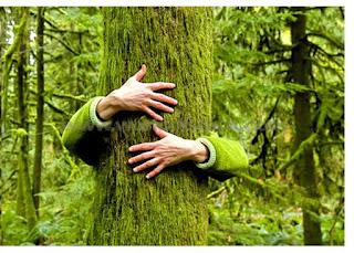 हम वृक्ष नहीं कटने देंगे