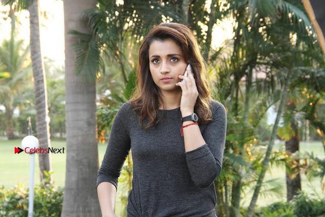 Actress Trisha Latest Pos from Garjanai Telugu Movie  0004.jpg