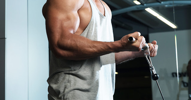 dumbbell bicep exercises