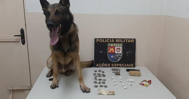 Homem tenta se livrar de sacola com drogas durante fuga, mas entorpecente é farejado por cão da PM