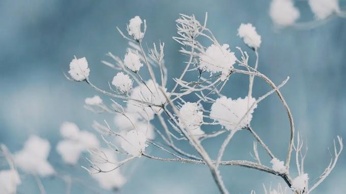 Nem adja magát könnyen a tél: a leghidegebb órákban mínuszokra kell készülni a tavasz első hétvégéjén