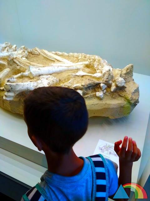 Exposición Sables y Mastodontes de CosmoCaixa Barcelona