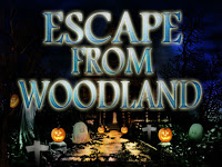 Play  Top10NewGames - Top10 Escape From Woodland