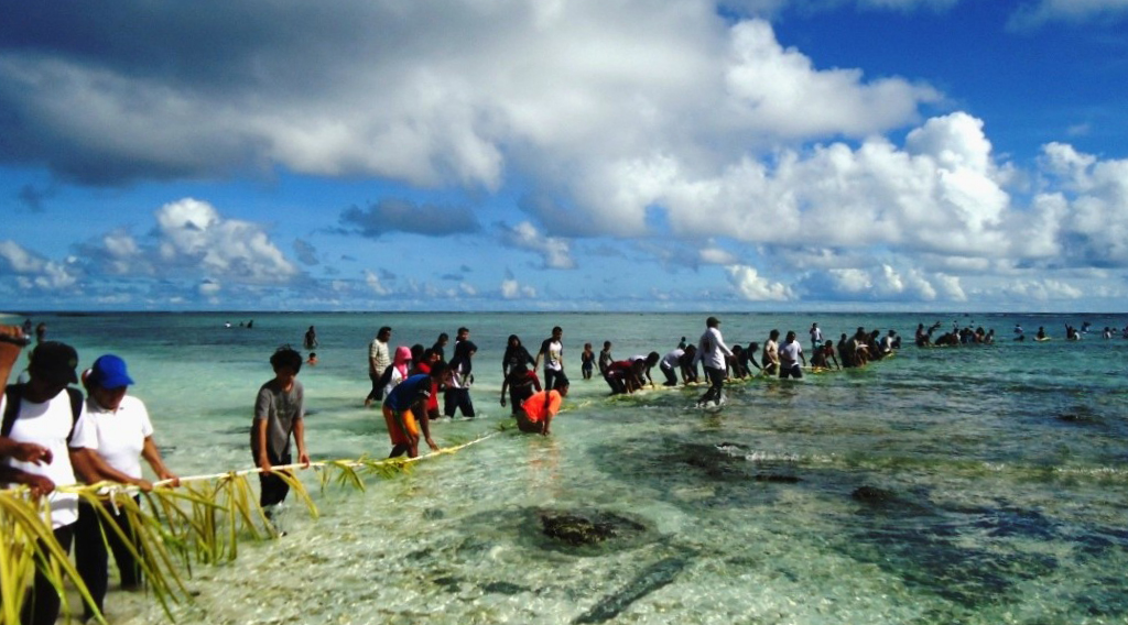 wisata alam indonesia yang mendunia cara menangkap ikan dengan mudah dengan daun kelapa