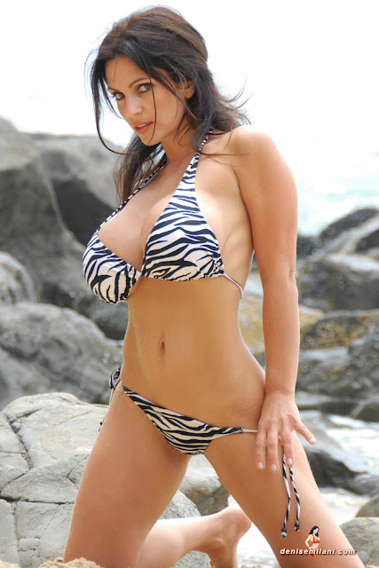 Denise Milani Beach Zebra HD Sexy Photoshoot Hot Photo 13