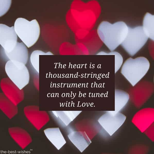 love quotes for lover