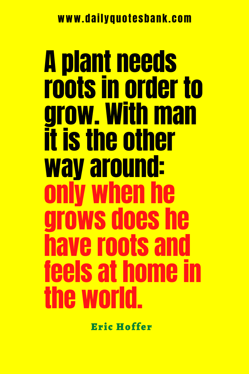 Quotes About Roots and Family