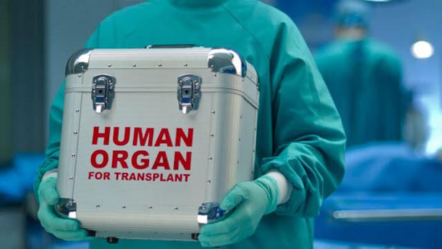 Донор във Варна даде шанс за нов живот на четирима трансплантирани