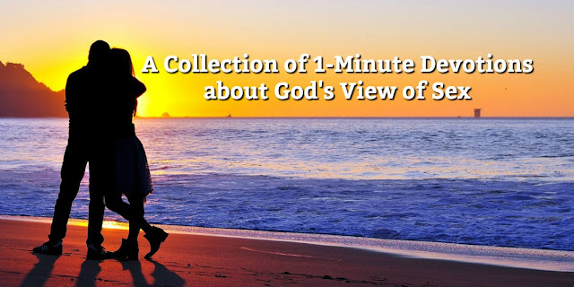 This is a Collection of 1-Minute Devotions about God's View of Sex. Concise, Scriptural, Helpful.