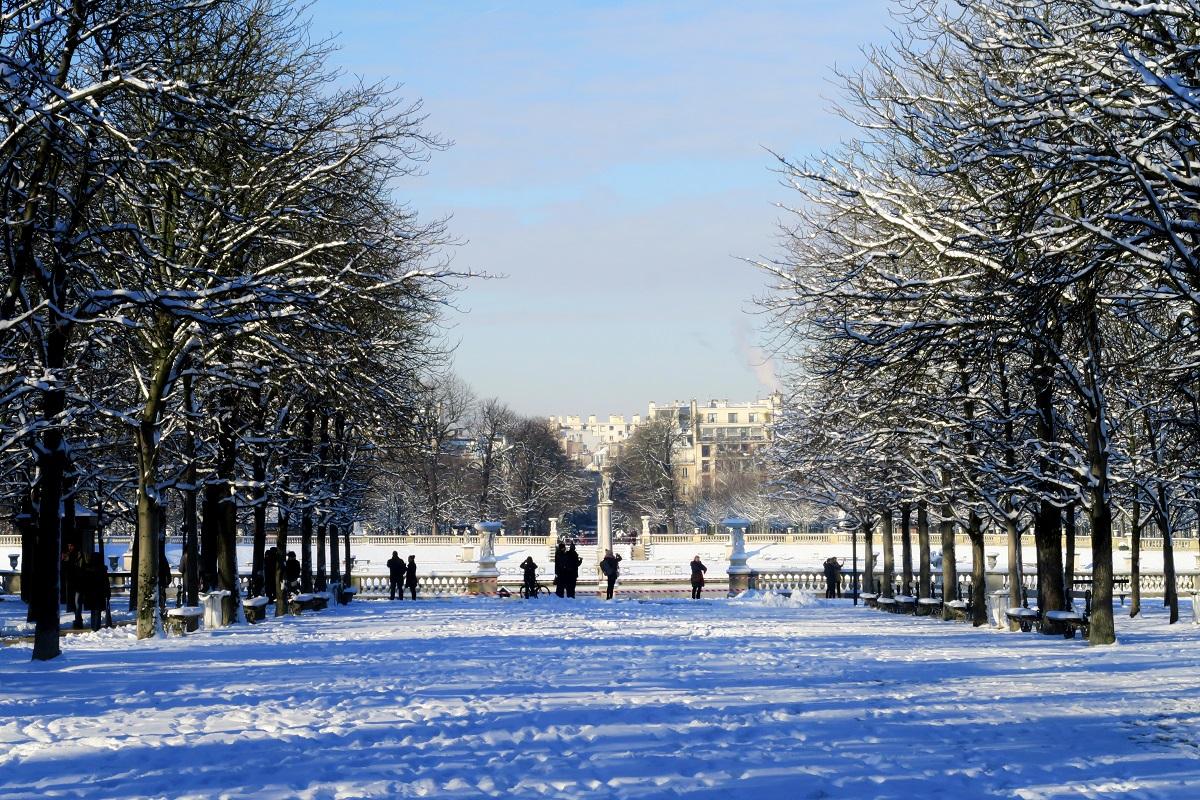 Allée, arbres, neige