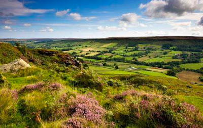 view of a valley in the North York Moors nationla Park in summer.
