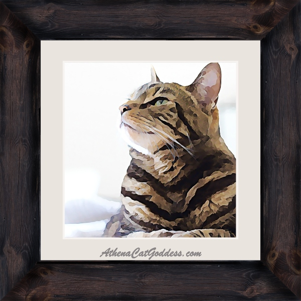 tabby cat artwork