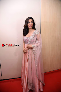 Bollywood Actress Model Sophie Choudry Stills in a Beautiful Dress at The Annual Central Excise Day Celetion  0013.jpg