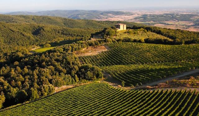 Informações sobre Caprilli em Montalcino