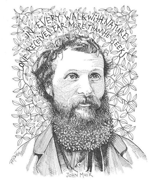 John Muir - The Godfather of Conservation