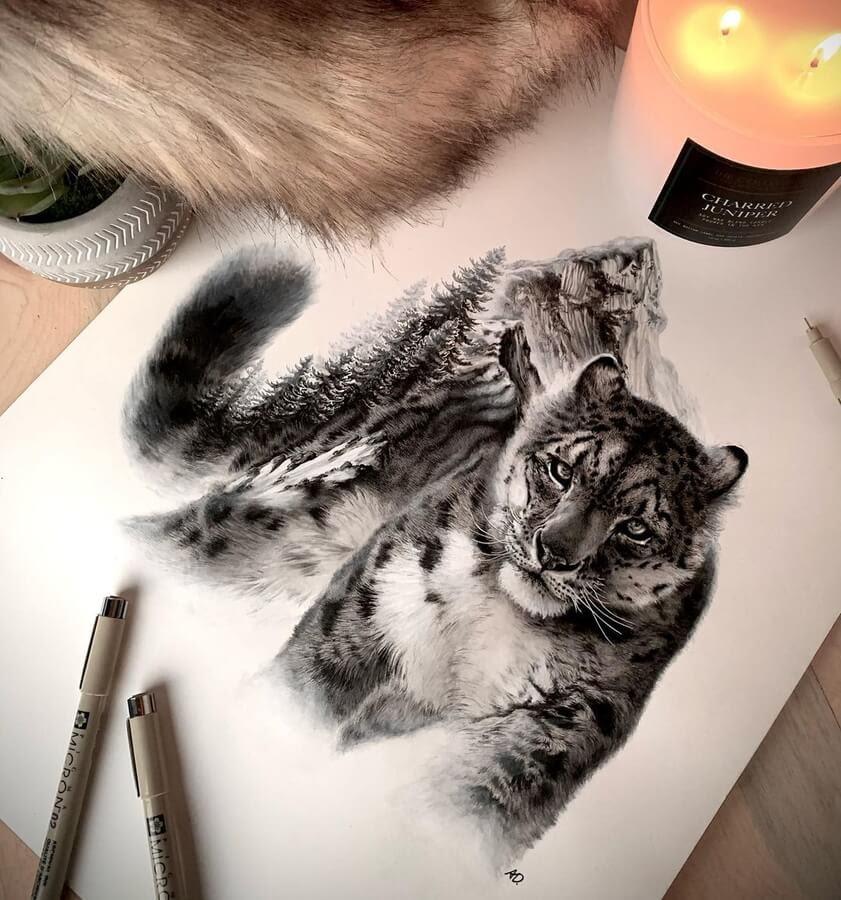 02-Snow-leopard-Alyse-Dietel-www-designstack-co