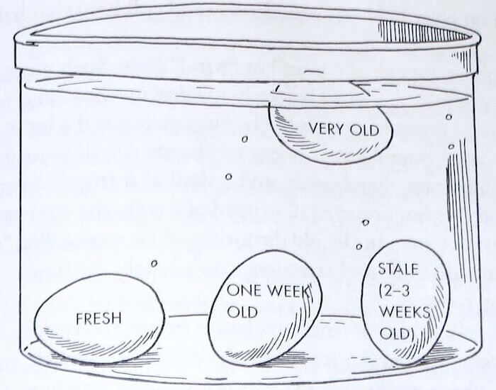 Cara ketahui telur masik elok
