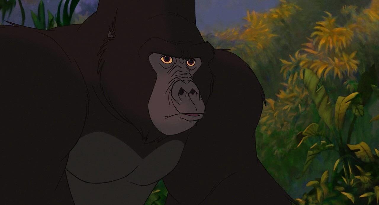 Gorilla Tarzan And Jane Related Keywords Suggestions Gorilla