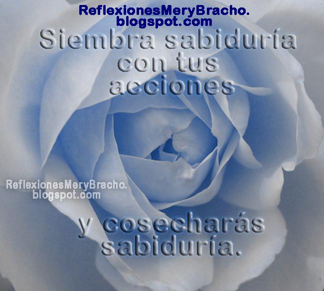 Nuestras acciones tienen consecuencias. Reflexiones Mery Bracho, devocionales cortos, meditaciones cristianas. Lo que hagas o digas tiene su consecuencia. Postales lindas con pensamientos. Tarjetas.