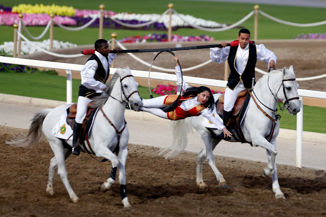 Oman - Annual Royal Horse Racing Festival in Muscat