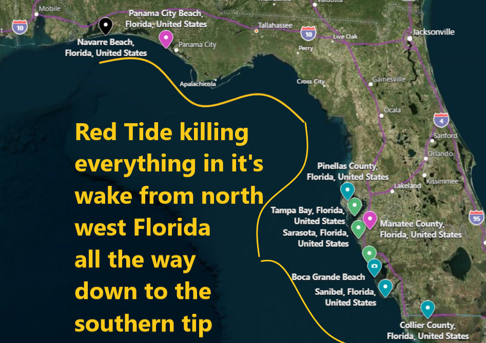 It is astonishing the number of Marine species dead along the entire Florida west coast Naamloos